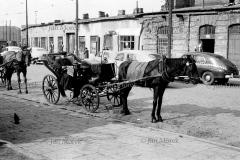 06.jpg|Warszawa, 1961-62, ul.Bagno, postój dorożek konnych i samochodowych
