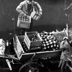 Hurtowy zakup wódki ze sklepu Pewex w Zakopanem, 1974